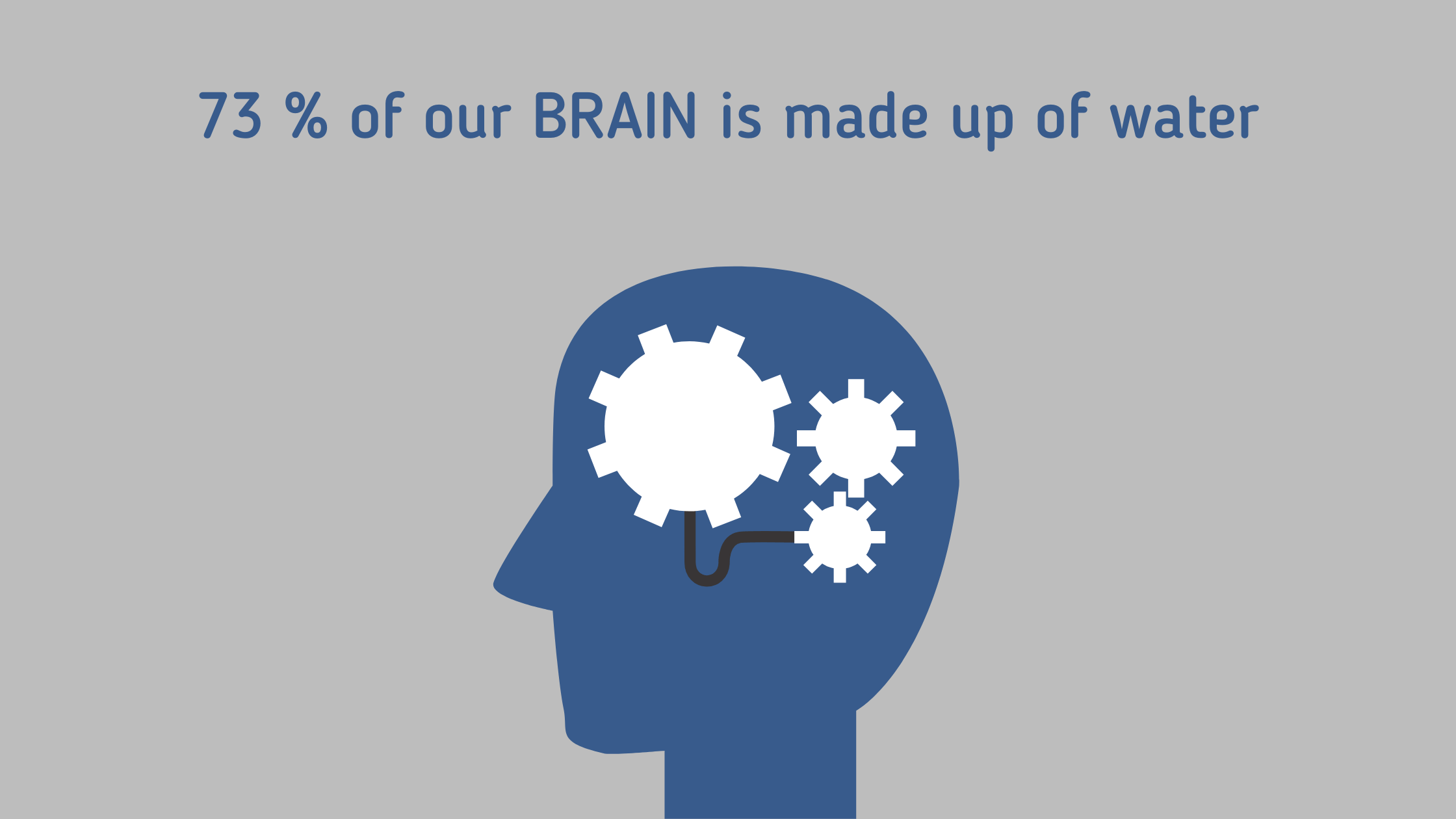73% of our brain is made up of water