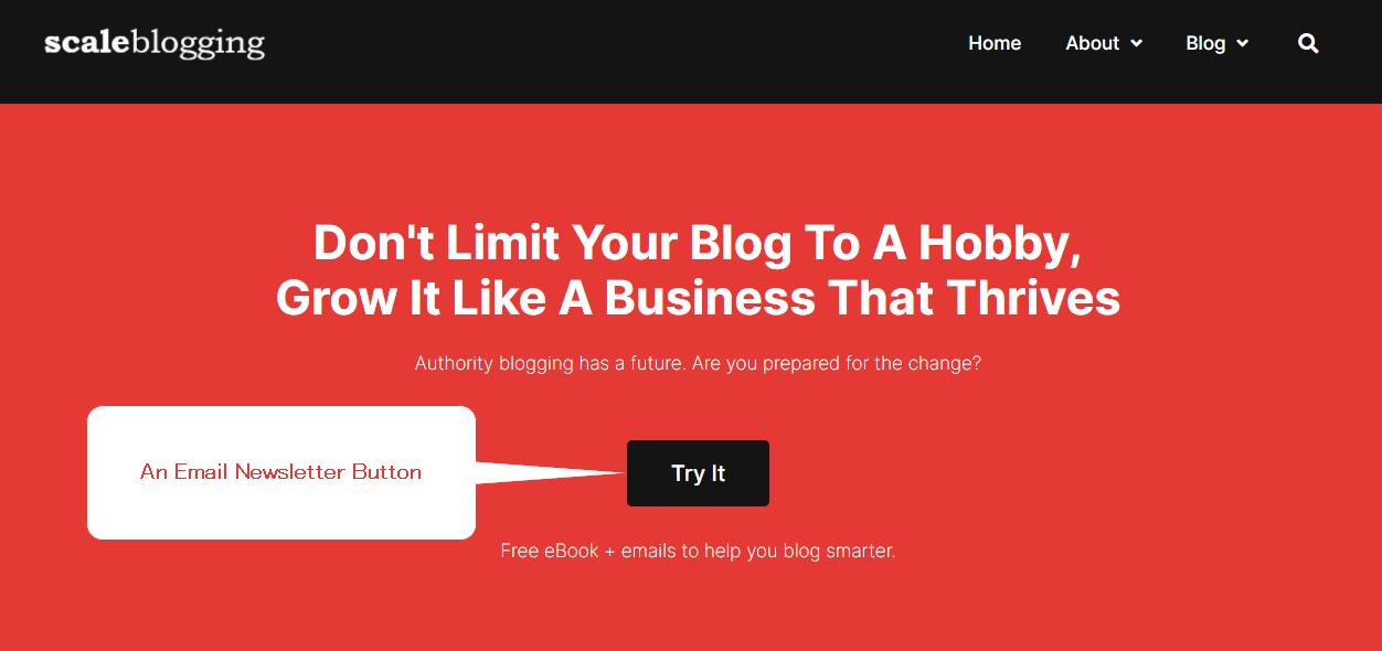 ScaleBlogging homepage