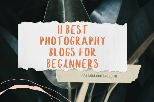 11 Best Photography Blogs for Beginners to Follow in 2021